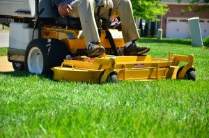Residential Lawn Care Raleigh NC